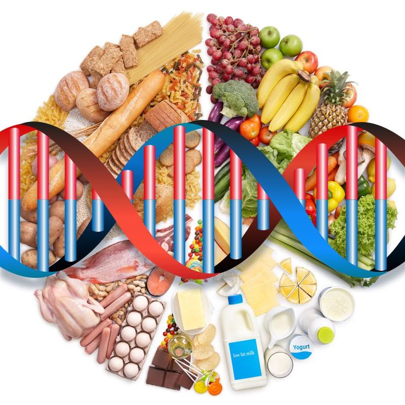 Nutrizione e genetica